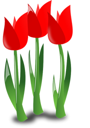 Aktion Frühlingsblumen
